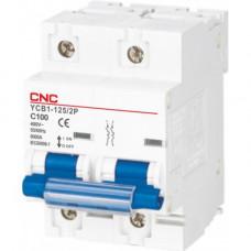 Модульный автоматический выключатель YCB1-125, 2Р, 100А, 6kA, тип D, CNC